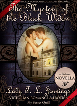 gothic mystery gay victorian romance
